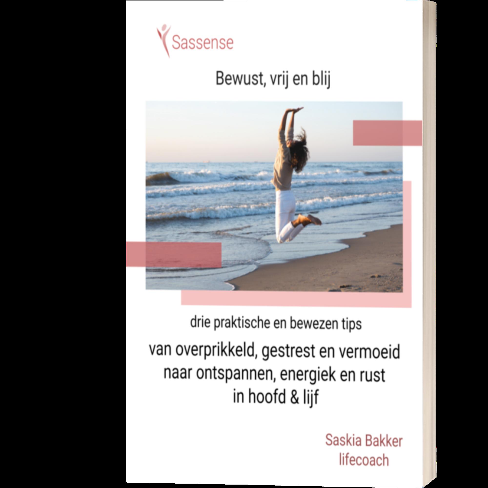 e-book Sassense